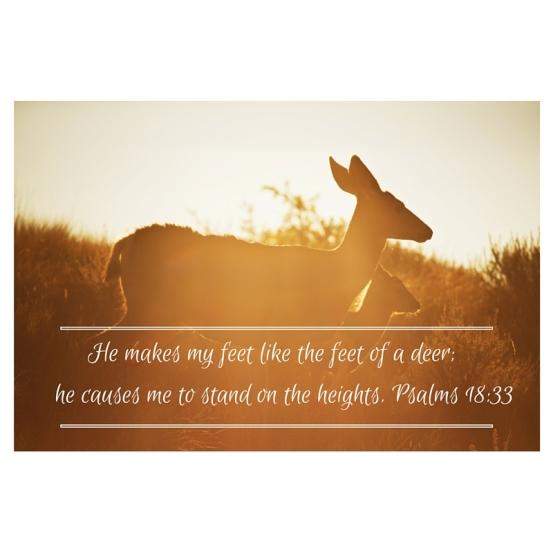 To the faithful you show yourself faithful, to the blameless you show yourself blameless,26 to the pure you show yourself pure, but to the devious you show yourself shrewd.